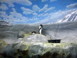 Penguins were just one exhibit enjoyed by Kids on the Rise at the Chattanooga Aquarium. A visit to the I-MAX Ocean Floor was also experienced.