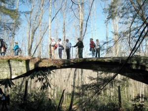 Hikers go across Natural Bridge during a recent hike at the  Big South Fork Recreation Area.
