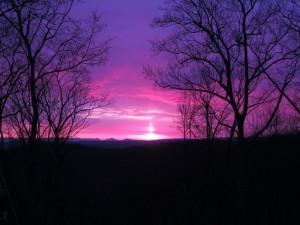 Vista Photo by Richard Albins