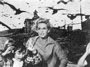 the birds-2