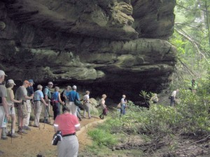 The Fairfield Glade Hiking Group will experience a little of everything on their trek this Friday.