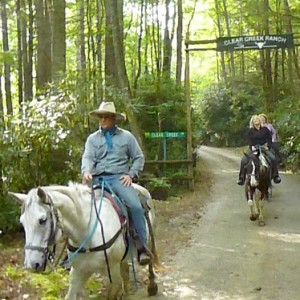 I hadn't been on a horse for years. It took about 2-minutes and I was high in the saddle again!